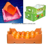 PlastikPackaging Box für Fruits