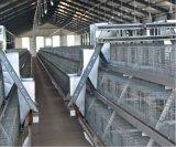 Neuer Hünchen-Bauernhof sperrt Geräten-System ein (einen Typen Rahmen)