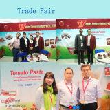 Venta caliente de China ninguna talla conservada aditiva 70g de la goma de tomate