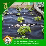 Zwarte kunststof Gronddoek Weed Mat