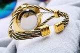 Les montres des femmes de bracelet d'étincelle goldtone