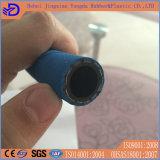 Tubo flessibile nero della gomma del gas