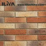 Tuile intérieure et extérieure de brique utilisée de construction de matériau de mur (YLD-14008)