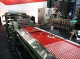 De automatische Geavanceerde Staaf van het Graangewas, de Staaf van het Suikergoed, de Machine van de Apparatuur van de Staaf van de Plak (BF-330)