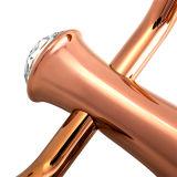 Amo d'ottone dell'abito del cappotto degli accessori Premium della stanza da bagno (BaQaZ5006-EL-RG)