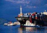 Logistica Service From Ningbo ad Amburgo della Germania