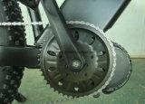 전기 불안정한 지원을%s 가진 뚱뚱한 전기 산악 자전거
