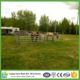 Ventes chaudes de bétail de l'Australie de panneaux normaux de bétail