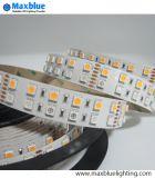 Luz de tira dobro do diodo emissor de luz da fileira SMD5050 RGBW SMD de DC12V/24V