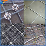 Snsの自衛用鉄条網の網