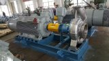 Petróleo da resistência de corrosão do aço inoxidável e bomba de combustível químicos