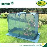 Serre chaude de serre chaude instantanée réutilisable de jardin d'Onlylife mini pour des centrales
