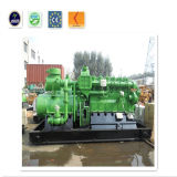 Ce & ISO Biogaz Générateur Electrique avec Canopée Silencieuse
