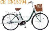 2014 모델 빠른 전기 자전거 (SN-004)