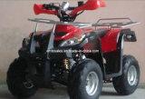Front&Back 수화물 선반 110cc ATV 쿼드 (ET-ATV005)를 가진 가장 큰 안전 범퍼