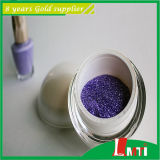 Glitter metallico Powder per Interior Wall Paint