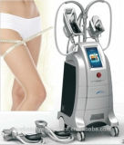 Equipo de congelación gordo vertical de la pérdida de peso de Cryotherapy para el salón de belleza (ETG50-4S)
