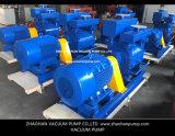 Vakuumpumpe-System für elektrischer Strom-Industrie beenden