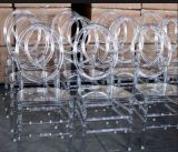 De duidelijke Stoel van Phoenix van de Hars Plastic voor de Partij van het Huwelijk van de Huur