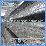 Cage alimentante automatique de poulet de couche de ferme avicole de système à vendre