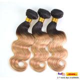 싼 Grade 5A 인도 Hair Ombre Human Hair Weave