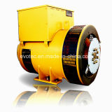 Evotec 상표 중국 판매를 위한 디젤 엔진 발전기 발전기