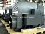 Высоковольтный дизель генератора постоянного магнита Evotec с AVR