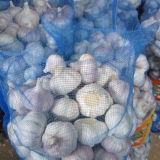 Естественный свежий белый чеснок