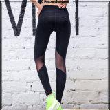 Pantaloni di yoga delle donne delle ghette di yoga delle donne di usura di sport della fabbrica dell'OEM