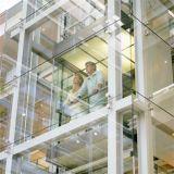 Ascenseur extérieur guidé résidentiel en verre d'intérieur d'observation panoramique