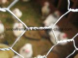 Горяч-Окунутое гальванизированное шестиугольное плетение мелкоячеистой сетки с высоким качеством