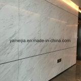 Comitati di pietra esterni del favo dei pannelli di rivestimento della parete