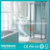 Governo pulito dell'acquazzone del taglio di buona qualità con la porta aperta di Hinger (SE322N)