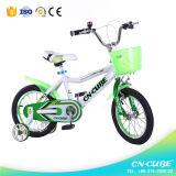 Il giocattolo diretto dei bambini di vendita della fabbrica scherza la bicicletta