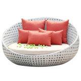 Spezieller Entwurfs-Garten-im Freienrattan-Möbel-Patio-Aufenthaltsraum-Stuhl-Strand Sunbed mit Cannopy Daybed mit Kissen