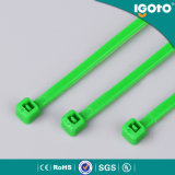 Собственная личность RoHS Ce UL фиксируя Nylon связь кабеля