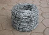 塀のための熱浸された電流を通されたかみそりの有刺鉄線