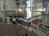 O ferro automático pode enchimento da lata de alumínio e máquina da selagem