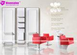 Popular de haute qualité Salon Miroir Chaise Salon président Barber (de P2025F)