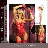 Младенец женщин безшовный прозрачный Strappy - игрушечный женское бельё куклы сексуальный (TEB645)
