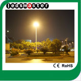 modèle de rue de 100W DEL pour l'économie d'énergie