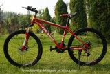 Bicicleta profissional da montanha do carbono da manufatura (ly-a-79)