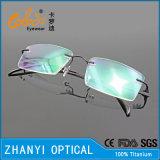 MOQ 없음 간단한 티타늄 Eyewear (5531)