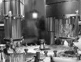 Horno de esterilización del túnel del infrarrojo lejano del frasco Had800-6000 para farmacéutico