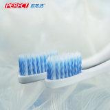 Spirale sich verjüngende doppelte mit Seiten versehene Schwan-Zahnbürste