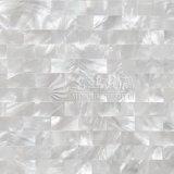Белая плитка мозаики раковины 10*20mm Mop губы