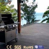 Decking plástico impermeable al aire libre vendedor caliente de la terraza de WPC
