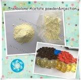 Trenbolone 아세테이트 크게 하는 주기 Tren 분말 주입 작은 유리병 Revalor-H 스테로이드