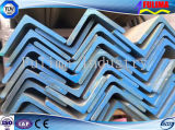 Acero laminado en caliente de Igualdad estructural Ángulo (FLM-RM-021)