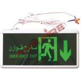 Segni dell'uscita di sicurezza, strumentazione di lotta antincendio (XHL-21002)